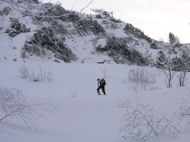 Foto: Salzprinz / Skitour / Über die Ausseer Sandlingalm auf den Sandling / Aufstieg über Nordhang zum Sandlingplateau / 09.01.2007 22:50:13