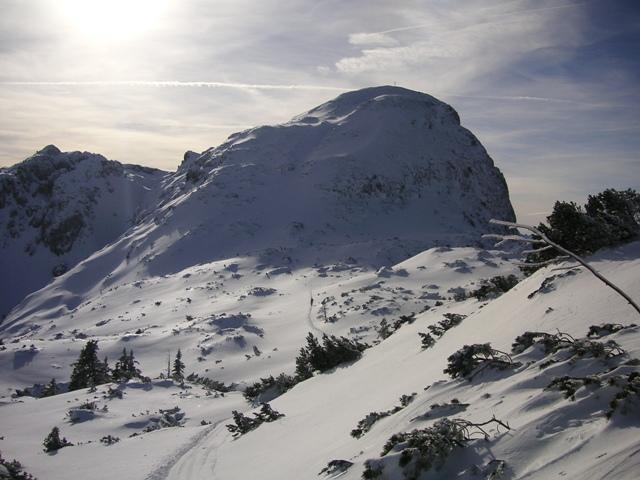Foto: Salzprinz / Ski Tour / Über die Ausseer Sandlingalm auf den Sandling / Sandlingplateau mit Gipfel / 09.01.2007 22:55:27