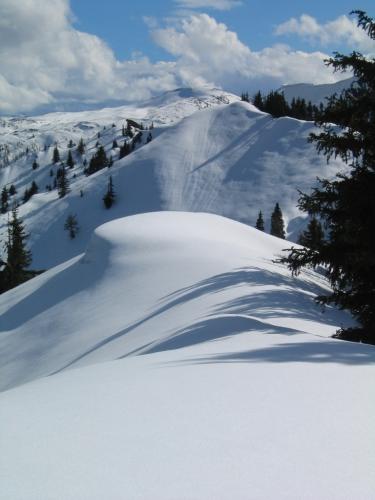 Foto: Christian Suschegg / Schneeschuhtour / Gritschenberg - Grasslherrgottweg - Zachenschöberl (1726m) / Blick vom Gipfelkreuz über den Grat Richtung Süden / 10.01.2007 18:17:25