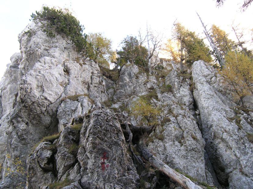 Foto: Benedik Herbert / Wander Tour / Käferwandl - ein etwas versteckter Gipfel / die letzten Meter......... / 10.01.2007 19:46:22