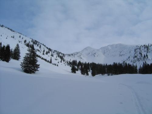 Foto: Christian Suschegg / Ski Tour / Horningalm - Schüttkogel (2049m) / Unterwegs im freien Gelände um die Horningalm. / 11.01.2007 13:37:43