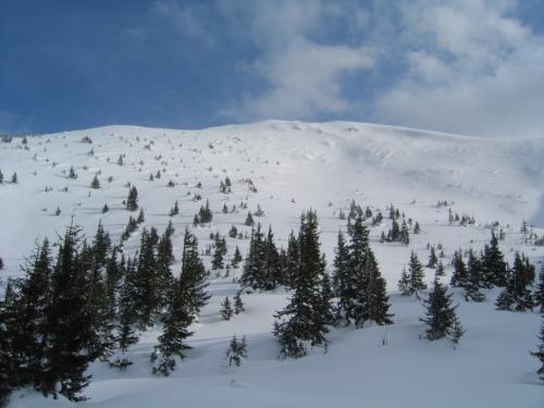 Foto: Christian Suschegg / Ski Tour / Horningalm - Schüttkogel (2049m) / Der letzte steilere Abschnitt auf den Gipfel / 11.01.2007 13:33:09