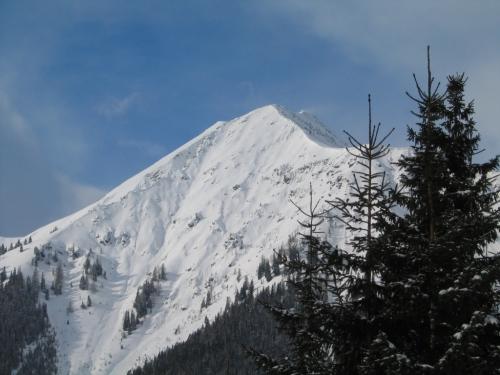 Foto: Christian Suschegg / Ski Tour / Horningalm - Schüttkogel (2049m) / Im unteren Aufstiegsbereich. Ausblick zum Hochgrößen. / 11.01.2007 13:42:31