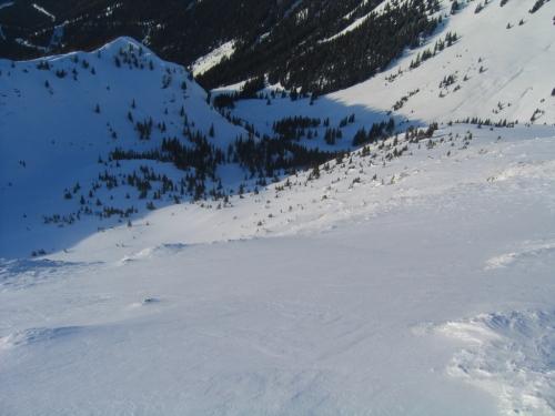 Foto: Christian Suschegg / Ski Tour / Horningalm - Schüttkogel (2049m) / Blick über das Aufstiegsgelände hinunter zu dem im Schatten liegenden freien Gelände um die Horningalm. / 11.01.2007 13:34:36