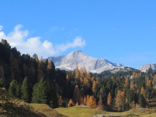 Foto: Christian Suschegg / Wander Tour / Ahornsee - Grafenbergalm - Kufstein (2049m) / Blick von der Grafenbergalm zum Gjaidstein. / 21.01.2007 18:01:41