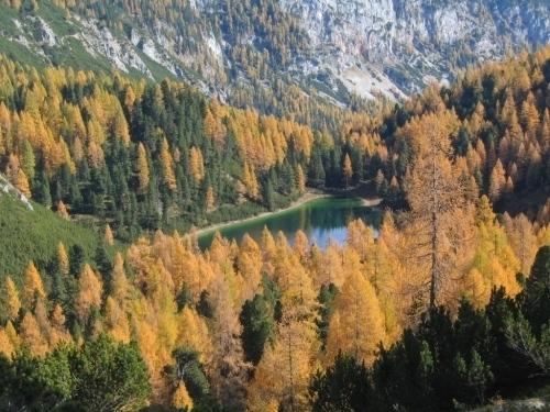 Foto: Christian Suschegg / Wander Tour / Ahornsee - Grafenbergalm - Kufstein (2049m) / Vorbei beim Grafenbergsee. / 21.01.2007 18:03:14