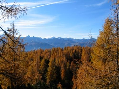 Foto: Christian Suschegg / Wander Tour / Ahornsee - Grafenbergalm - Kufstein (2049m) / Die Schladminger Tauern über den herbstlich gefärbten Wäldern. / 21.01.2007 17:57:52