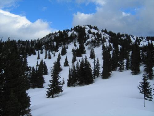 Foto: Christian Suschegg / Schneeschuh Tour / Aus der Walchen auf Totenkarspitz und Karlspitz / Das Abstiegsgelände vom Karlspitz. / 17.01.2007 19:28:53