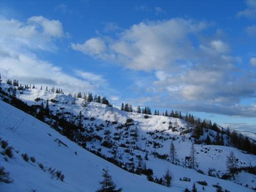 Foto: Christian Suschegg / Schneeschuh Tour / Aus der Walchen auf Totenkarspitz und Karlspitz / Das liebliche Gelände um die verfallene Weppritzalm. / 17.01.2007 19:30:28