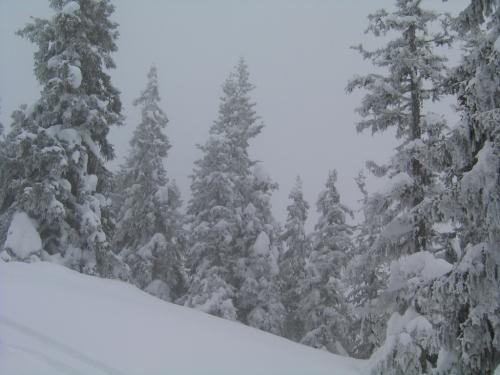Foto: Christian Suschegg / Ski Tour / Von Lassing auf den Blosen / Auch bei nicht optimalen Verhältnissen eine schöne Tour - am besten bei Pulverschnee. / 18.01.2007 13:15:48