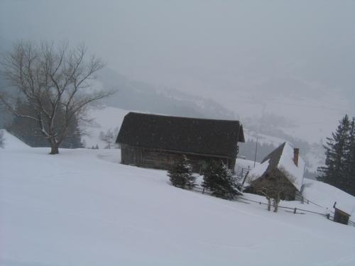 Foto: Christian Suschegg / Ski Tour / Von Lassing auf den Blosen / Abstieg an einem Hof vorbei. Tiefblick nach Lassing. / 18.01.2007 13:13:54