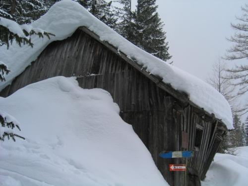 Foto: Christian Suschegg / Ski Tour / Von Lassing auf den Blosen / Im oberen Bereich entlang des markierten Sommerweges, an einer verfallenen Hütte vorbei. / 18.01.2007 13:14:42