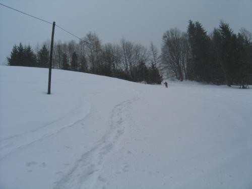 Foto: Christian Suschegg / Ski Tour / Von Lassing auf den Blosen / Von Lassing bis etwa 1.200 Meter Höhe führt der Aufstieg über freie Wiesenhänge.   / 18.01.2007 13:13:23
