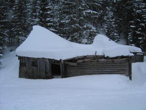 Foto: Christian Suschegg / Ski Tour / Von Lassing auf den Blosen / An einer verfallenen Hütte vorbei - und weiter im Wald. / 18.01.2007 13:17:11