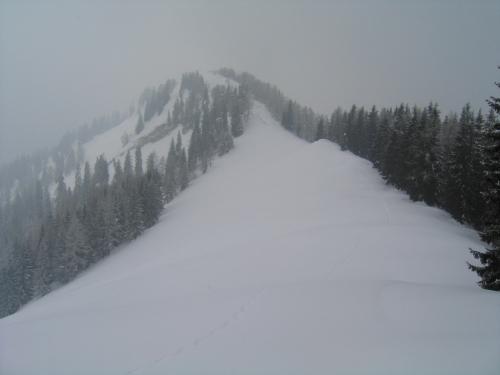 Foto: Christian Suschegg / Schneeschuhtour / Storingalm - Feldl / Abstieg über den Ost-Rücken zu den freien Wiesenhängen oberhalb der Storingalm. / 21.01.2007 12:26:43