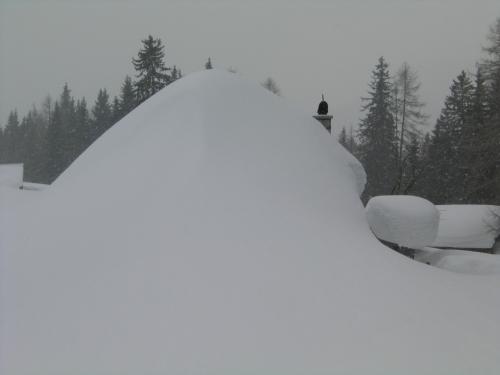 Foto: Christian Suschegg / Schneeschuhtour / Storingalm - Feldl / Unter dem