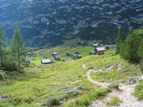 Foto: Christian Suschegg / Wander Tour / Vom Loser auf Rinnerkogel und Redenden Stein / Abstieg durch den Henarwald zur Augstwiesenalm. / 22.01.2007 15:34:50