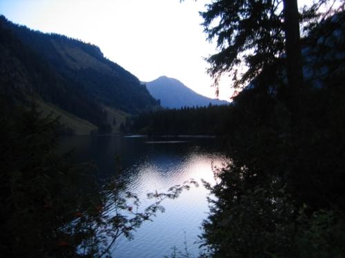 Foto: Christian Suschegg / Wander Tour / Über den Schwarzensee auf Schöneck und Hasenhöhe / Im Bereich des Schwarzensee´s kurz nach Sonnenaufgang. / 22.01.2007 17:53:12