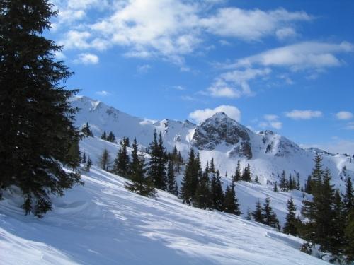 Foto: Christian Suschegg / Ski Tour / Schattnerzinken (2156m) / An der Waldgrenze. Das Gelände öffnet sich. / 23.01.2007 10:21:54