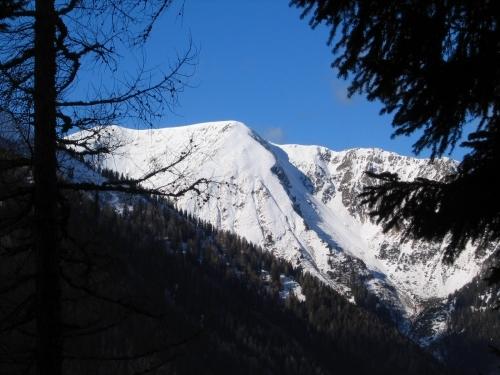 Foto: Christian Suschegg / Ski Tour / Schattnerzinken (2156m) / Beim Aufstieg: Walddurchblick zum Hochgrößen. / 23.01.2007 10:22:58