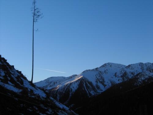 Foto: Christian Suschegg / Ski Tour / Schattnerzinken (2156m) / Der Hochrettelstein beim Abstieg entlang der neu angelegten Schneise. Achtung: Beachten Sie die Verbotstafeln der Flick´schen Forstverwaltung - Nach 16:00 Uhr sollte man nicht mehr im Wald angetroffen werden. / 23.01.2007 10:24:11