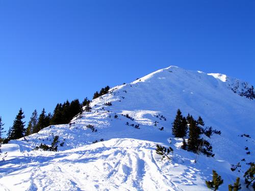 Foto: vince 51 / Schneeschuh Tour / Mit Schneeschuhen auf den Ochsenälpeleskopf (1905m) / Ostrücken / 27.01.2007 23:26:43