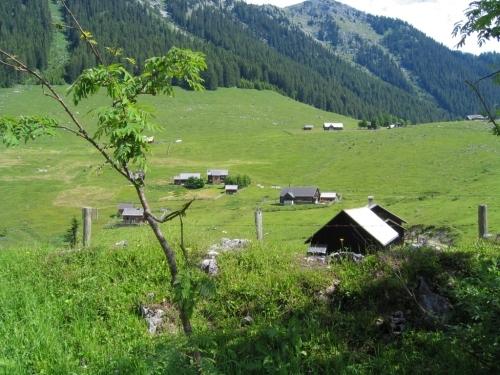 Foto: Christian Suschegg / Wander Tour / 3-Gipfel-Runde am Hochangernstock: Kosennspitz - Angerkogel - Nazogl / Vom Parkplatz zur Hinteregger Alm. / 29.01.2007 20:31:46