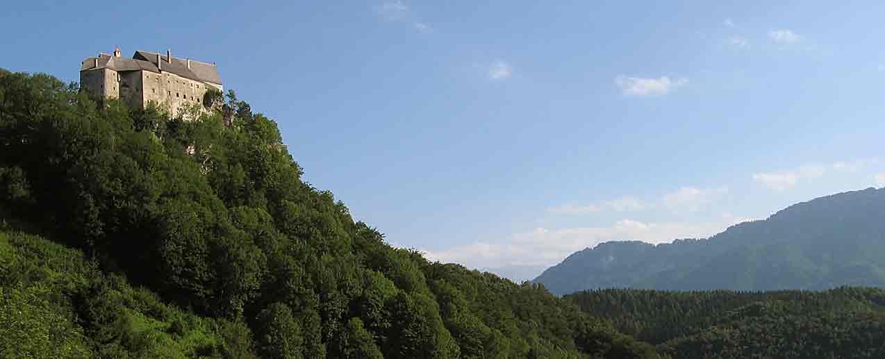Foto: grilli / Wander Tour / Hirschwaldstein (1095m) / Burg Altpernstein / 03.02.2007 21:47:13