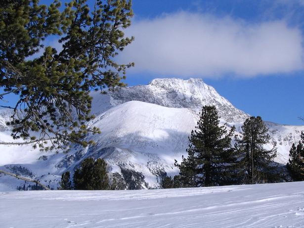 Foto: Andreas Koller / Ski Tour / Von Tweng auf den Rosskogel (2149 m) / Im O grüßt das Gurpitschek / 05.02.2007 21:35:40