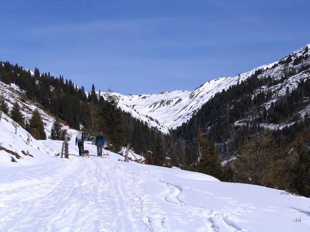 Foto: Andreas Koller / Schneeschuh Tour / Durch das Dürnbachtal auf den Rossberg (2185 m) / Bis zur Steiner Alm auch als Rodeltour geeignet / 12.02.2007 03:32:49