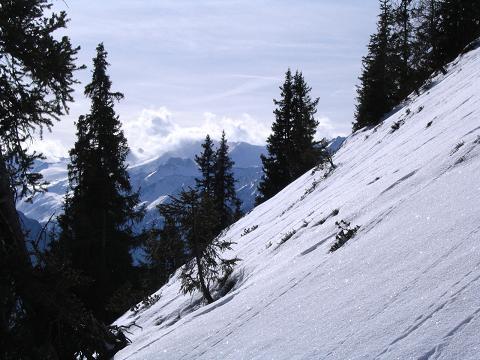 Foto: Andreas Koller / Schneeschuh Tour / Durch das Dürnbachtal auf den Rossberg (2185 m) / Steile, O-seitige Hänge auf den Rossberg / 12.02.2007 03:31:12