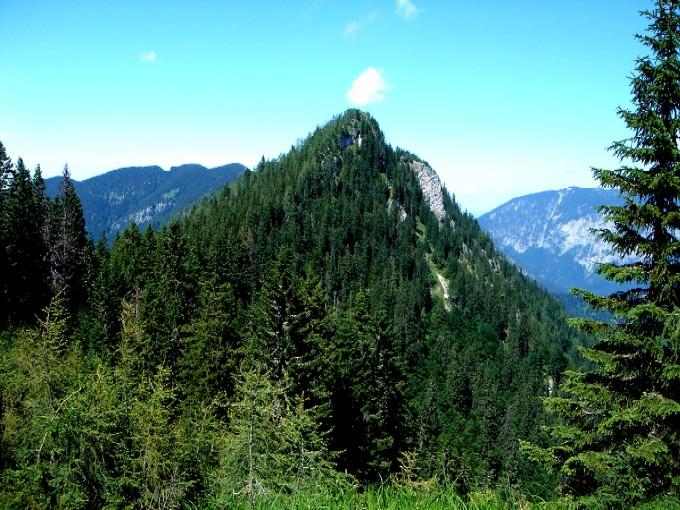 Foto: Manfred Karl / Wander Tour / Karspitz (1641m) / Blick vom Jochköpfl gegen den bewaldeten Karspitz. Der optische Eindruck täuscht, vom Gipfel des Karspitz hat man eine sehr schöne Rundschau. / 14.02.2007 06:44:34