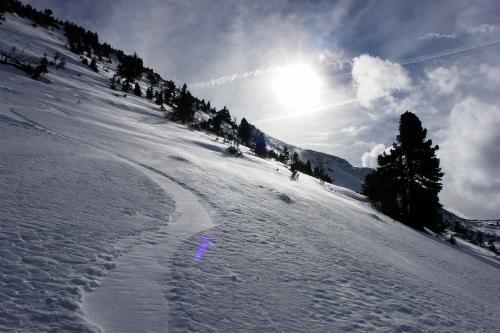 Foto: Christian Suschegg / Ski Tour / Ahornkogl (2001m) / Unterwegs auf der stellenweise etwas steileren Westflanke / 12.02.2007 19:34:18