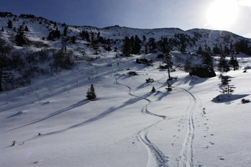 Foto: Christian Suschegg / Ski Tour / Ahornkogl (2001m) / Im unteren nur mäßig steilen Bereich der Westhänge. / 12.02.2007 19:41:56