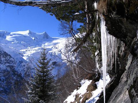 Foto: Andreas Koller / Ski Tour / Innergschlöss und Zeigerpalfen (2506 m) / Eiszapfen am Anstiegsweg / 12.02.2007 19:33:43