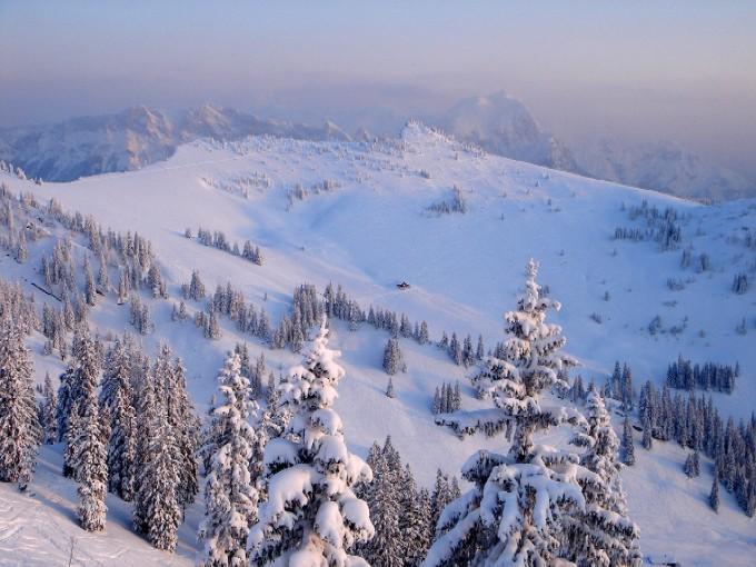 Foto: Manfred Karl / Ski Tour / Peitingköpfl (1720m) / Der einladende Gipfelhang des Peitingköpfls vom Hirscheck aus. / 13.02.2007 21:04:47
