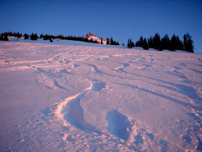 Foto: Manfred Karl / Ski Tour / Peitingköpfl (1720m) / Häufig weist der Gipfelhang so gute Schneeverhältnisse auf, dass man gerne noch ein zweites Mal das kurze Stück von der Alm hinaufgeht. / 13.02.2007 21:16:33