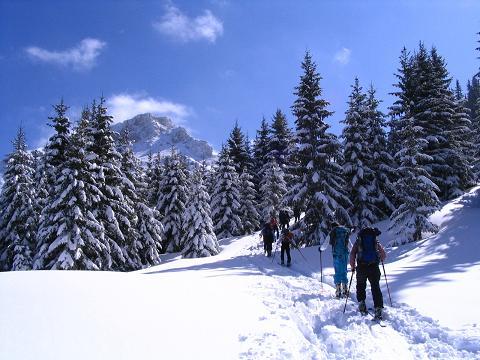 Foto: Andreas Koller / Skitour / Aus der Eisenerzer Ramsau auf drei Gipfel (2070 m) / Von der Teichenegg Alm dem Wildfeld entgegen / 12.03.2007 13:37:41