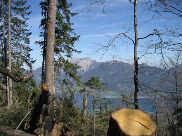 Foto: Alpinfreunde / Wander Tour / Von Weißenbach bei Strobl auf den Großen Sparber / 13.04.2007 19:55:10