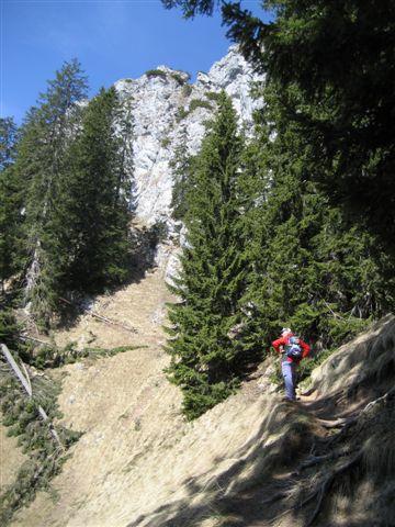 Foto: Alpinfreunde / Wander Tour / Von Weißenbach bei Strobl auf den Großen Sparber / 13.04.2007 19:55:16