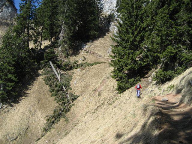 Foto: Alpinfreunde / Wander Tour / Von Weißenbach bei Strobl auf den Großen Sparber / 13.04.2007 19:55:33