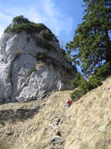 Foto: Alpinfreunde / Wander Tour / Von Weißenbach bei Strobl auf den Großen Sparber / 13.04.2007 19:55:44