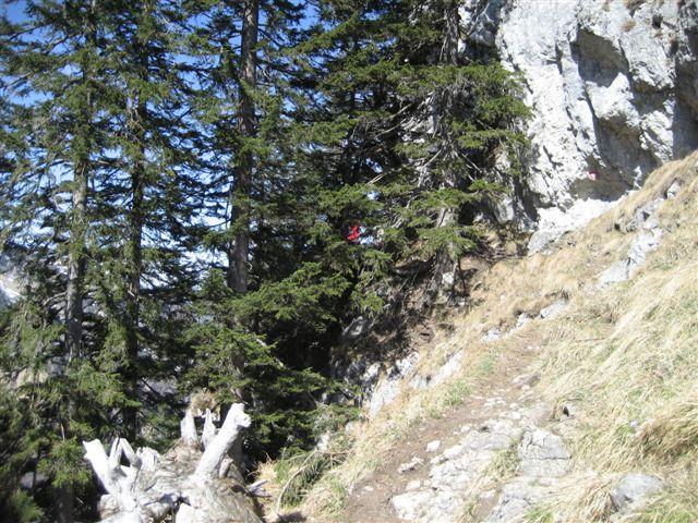 Foto: Alpinfreunde / Wander Tour / Von Weißenbach bei Strobl auf den Großen Sparber / 13.04.2007 19:55:58