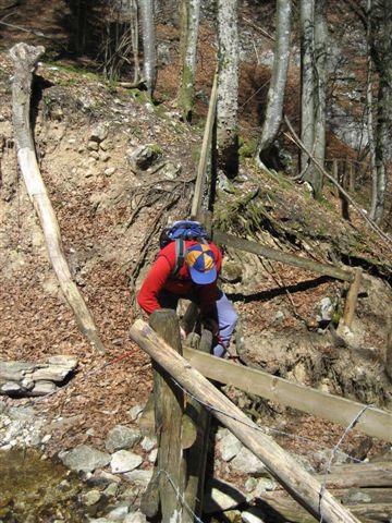 Foto: Alpinfreunde / Wander Tour / Von Weißenbach bei Strobl auf den Großen Sparber / 13.04.2007 19:58:11