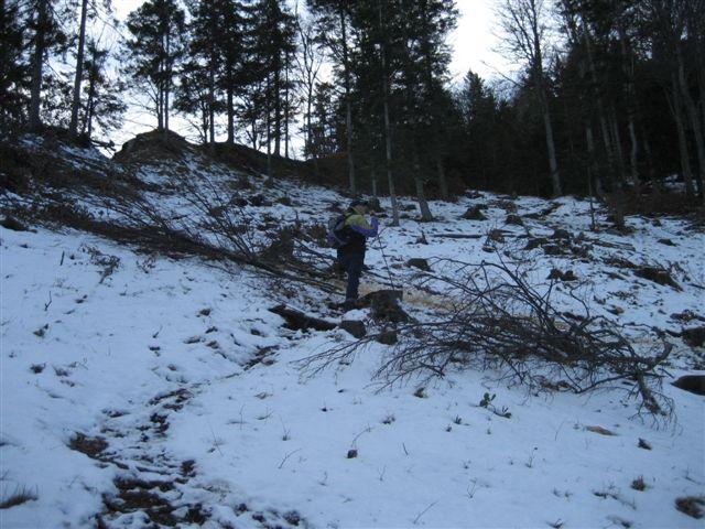 Foto: Jogal / Wander Tour / Von Steinbach am Ziehberg auf den Mittagstein / 19.04.2007 07:08:35