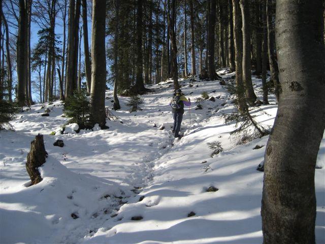Foto: Jogal / Wander Tour / Von Steinbach am Ziehberg auf den Mittagstein / 19.04.2007 07:09:44
