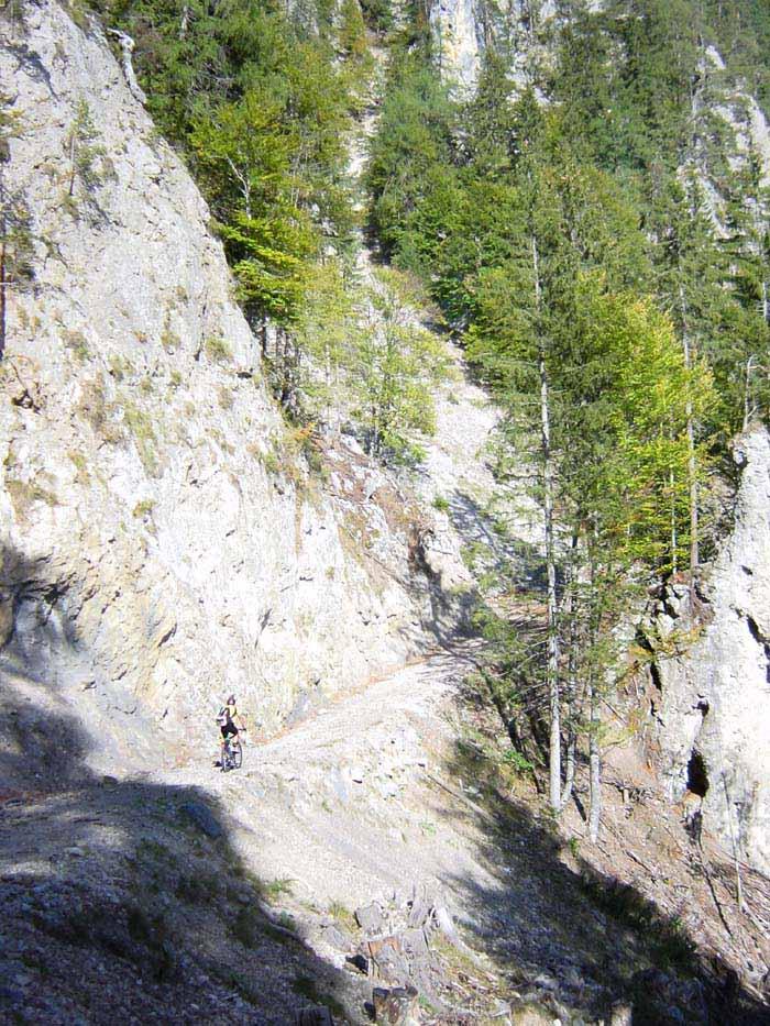 Foto: Corinna Mößlacher / Mountainbike Tour / Durch die Sonnseit´n - Weissensee / Alemergraben / 03.05.2007 16:31:16
