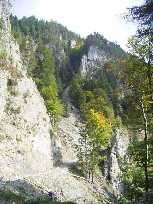 Foto: Corinna Mößlacher / Mountainbike Tour / Durch die Sonnseit´n - Weissensee / Alemergraben / 10.05.2007 10:21:27