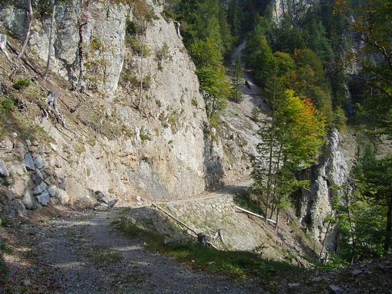 Foto: Corinna Mößlacher / Mountainbike Tour / Durch die Sonnseit´n - Weissensee / 10.05.2007 10:21:47