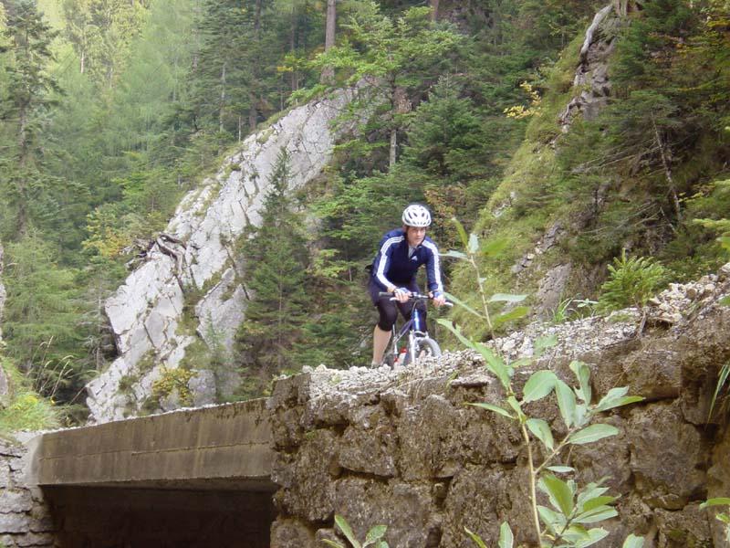 Foto: Corinna Mößlacher / Mountainbike Tour / Bodenalm - Weissensee Ostufer - mit dem Schiff zurück / Bikestrecke Richtung Bodenalm / 07.05.2007 09:54:42